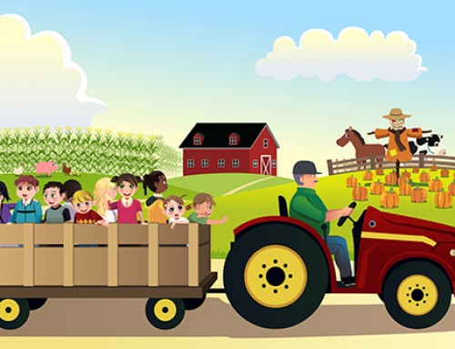 Safety Tips for You Fall Corn Mazes, Hayrides & Other Activities