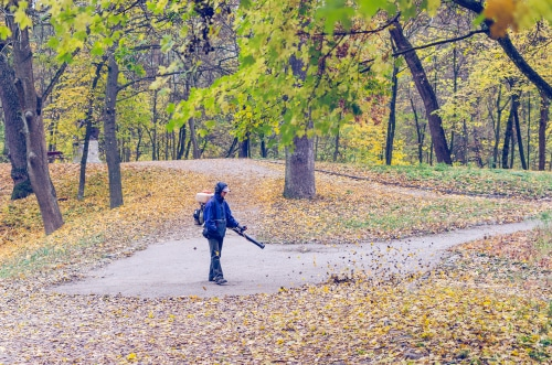 Business Establishments and Home Owners Have a Responsibility to Clean Up Their Leaves