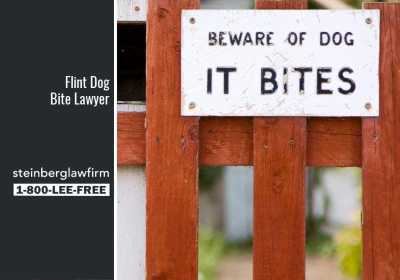 Dog Bite Lawyer Flint