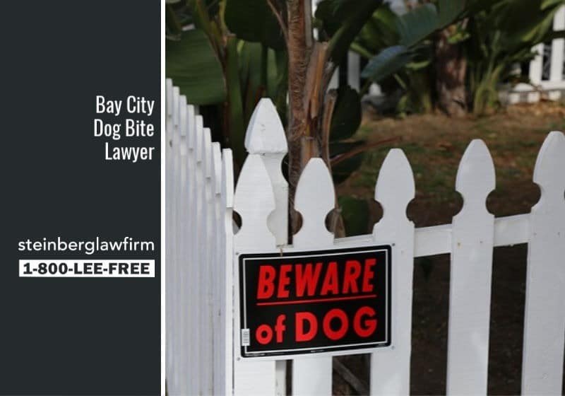 Bay City Dog Bite Lawyer
